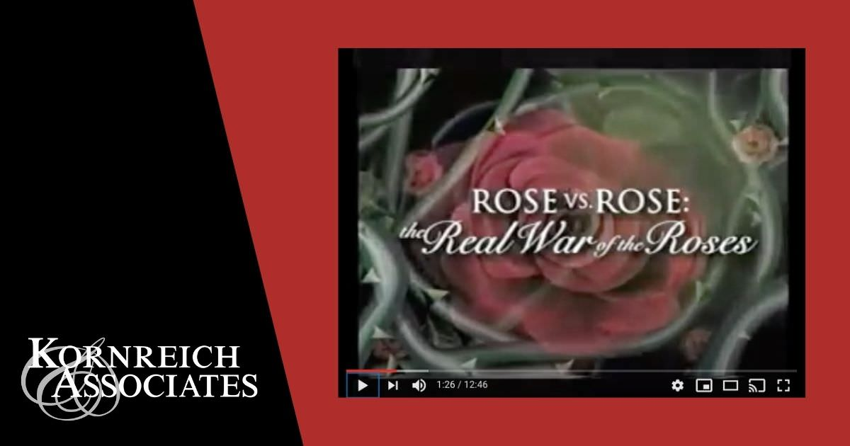 "graphic featuring ABC Primetime tv segment ""Rose v Rose"" featuring Gerald Kornreich, divorce lawyer"
